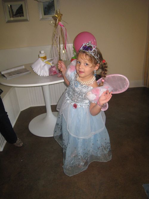 Cinderella butterfly 1