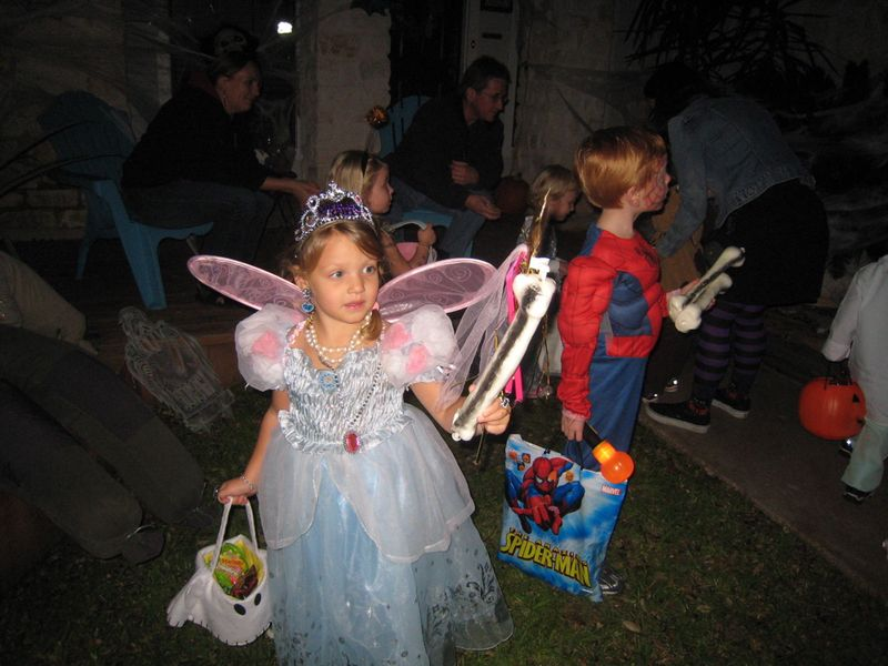 Cinderella butterfly 2