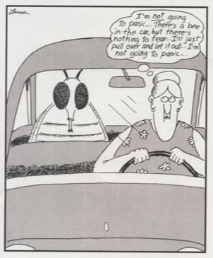 Larson bee