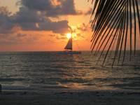 Sunsetsail_1